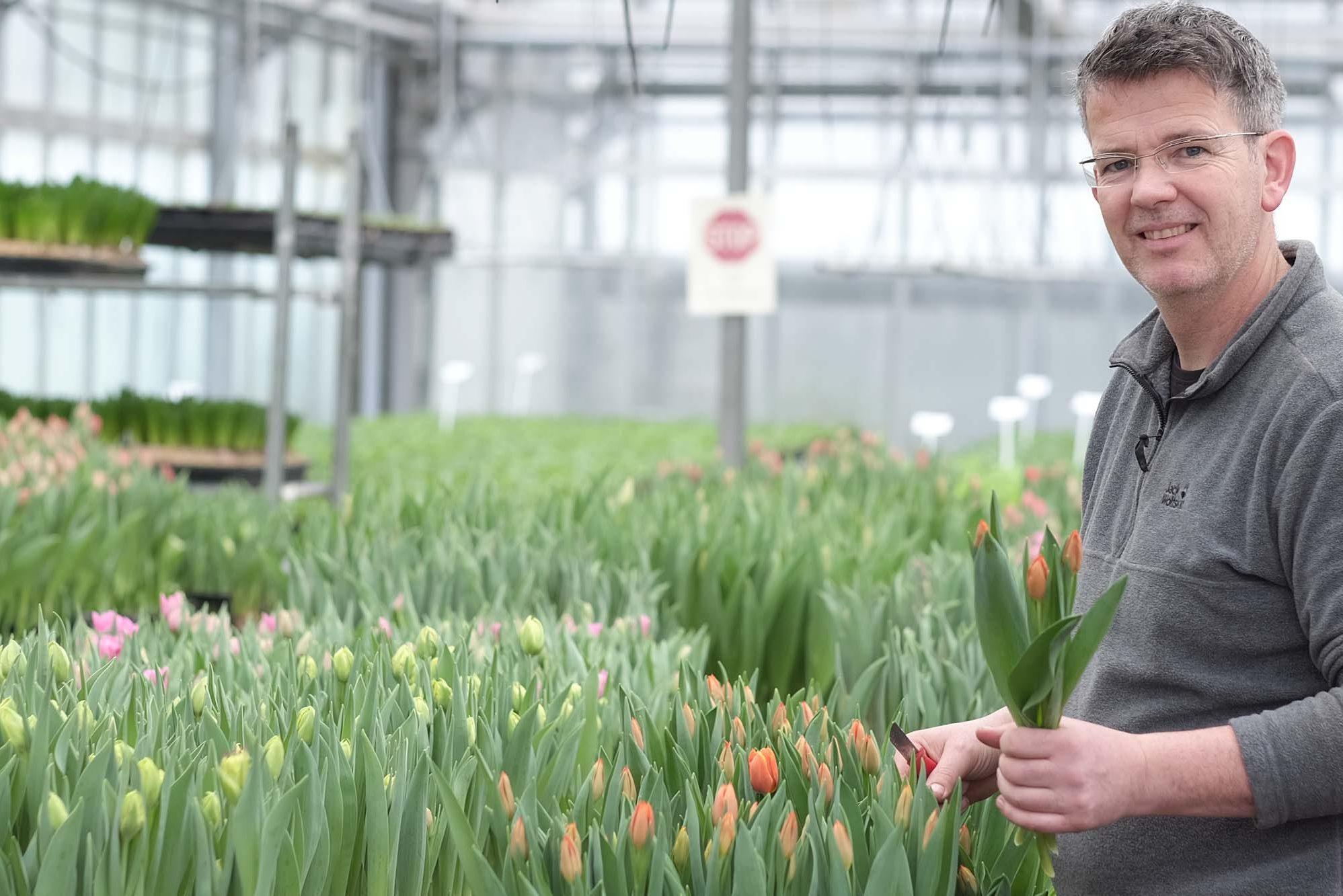 Gärtnerei Blumen Bendler im Advent